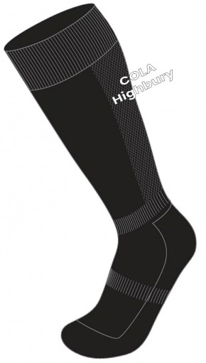 COLA Highbury Grove Football Socks with School Logo (8114)