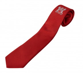 Skinners Academy School Tie - Y10 and Y11 (SKA8293)